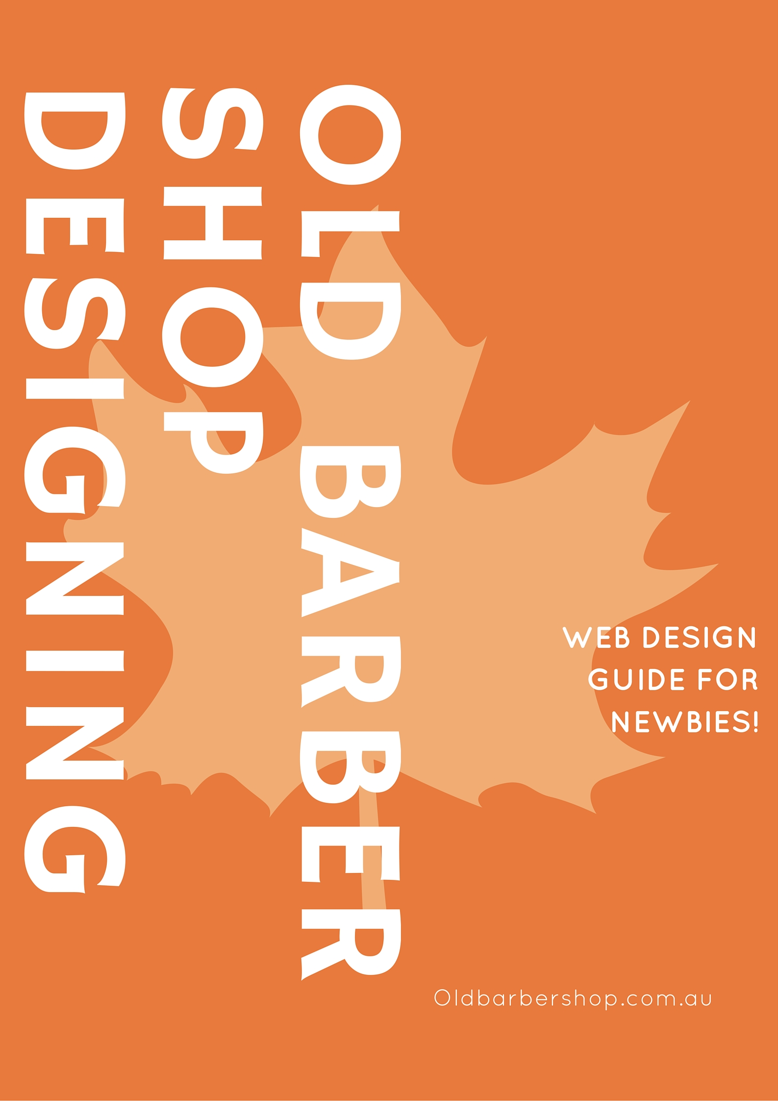 Web Design Guide for Newbies!